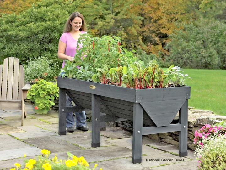 Vegetable Garden Cantainer